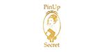 prosafe-Pin-Up-secret